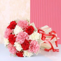15 Mixed Carnations Bunch