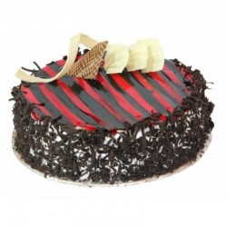 Chocolate Fantasy Pastry Cake